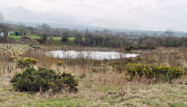 Small Pond on Reclaimed Opencast Land