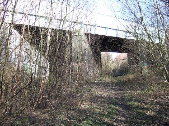 Bridge under Black Road