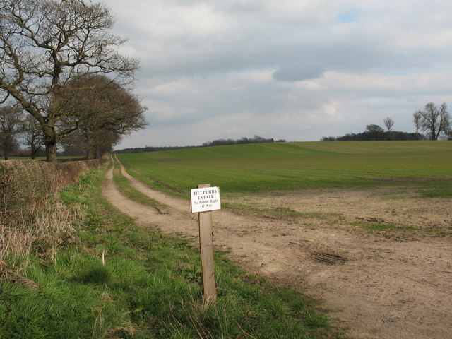 Arable land near Helperby