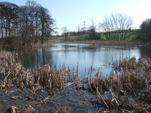 Goosehill Pond