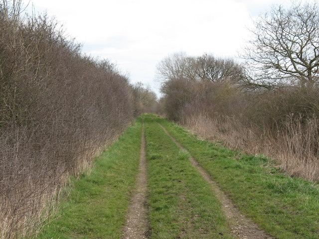 Moor Lane Tholthorpe