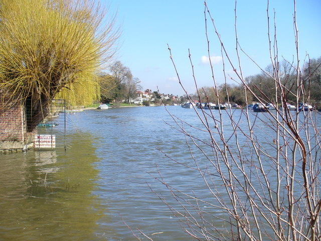 Looking Downstream at Sunbury-on-Thames