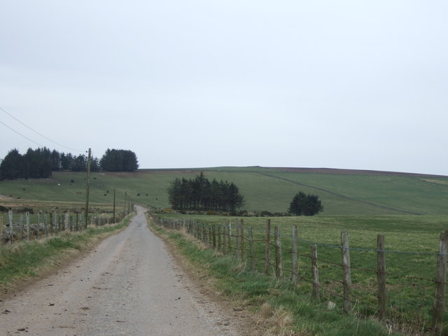 Road towards East Brachmont