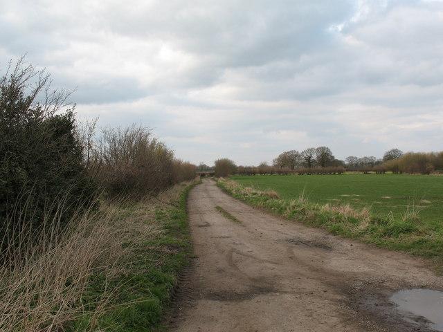 Intake Lane, Tollerton