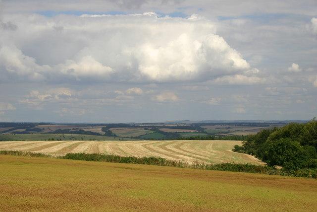 Shillingstone Hill