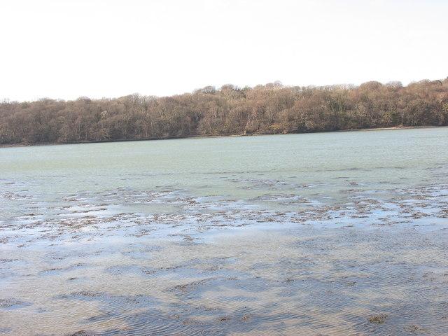 Afon Menai and Coed Plas Newydd Woods