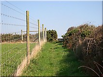 SW7652 : Footpath and Fence by Tony Atkin