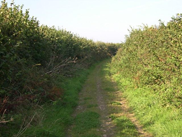Farm Road near Lambriggan