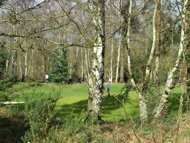 Golf Course near Enville, Staffordshire