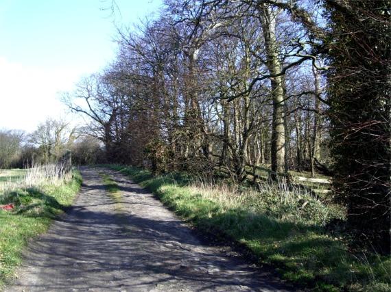 Farm track, Lathom