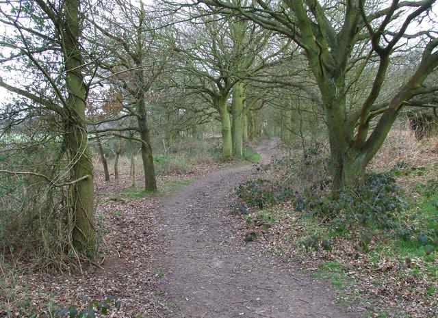 Bridleway near Halfpenny Green, Staffordshire