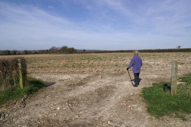 Field near Fobdown