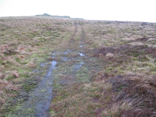 Gargunnock Hills approaching Carleatheran