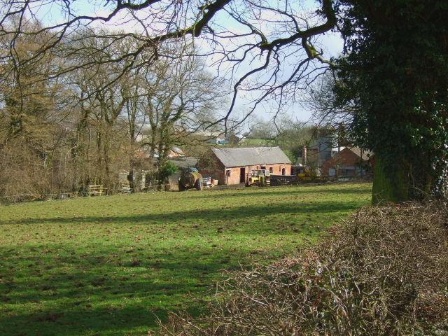 Farm near Hales Green