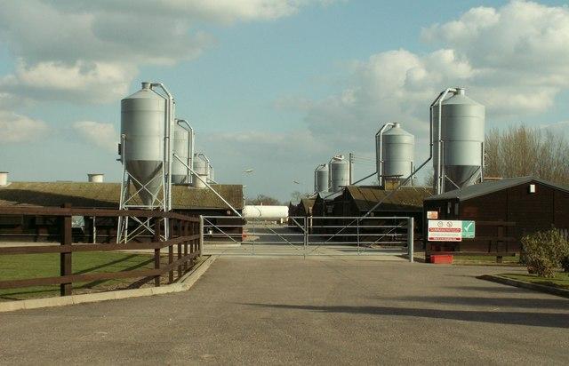Part of Corner Farm