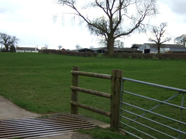 Sandhills  Farm