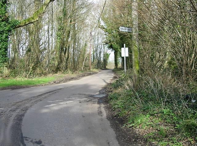 Road through Walderchain Woods