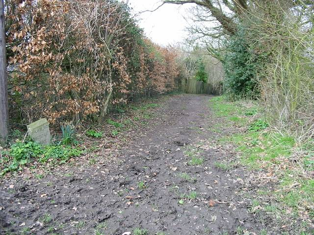 Looking W along part of the Elham Valley Way
