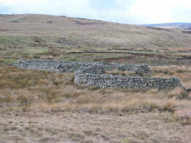 Sheepfolds on Arkengarthdale Moor