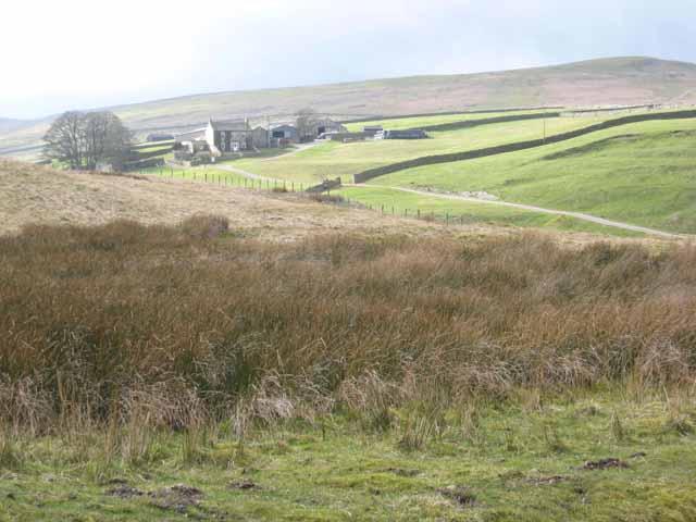 Punchard Farm