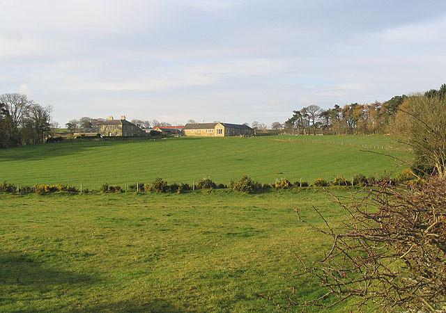 Belford Mains Farm