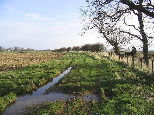 Public footpath to Buckton