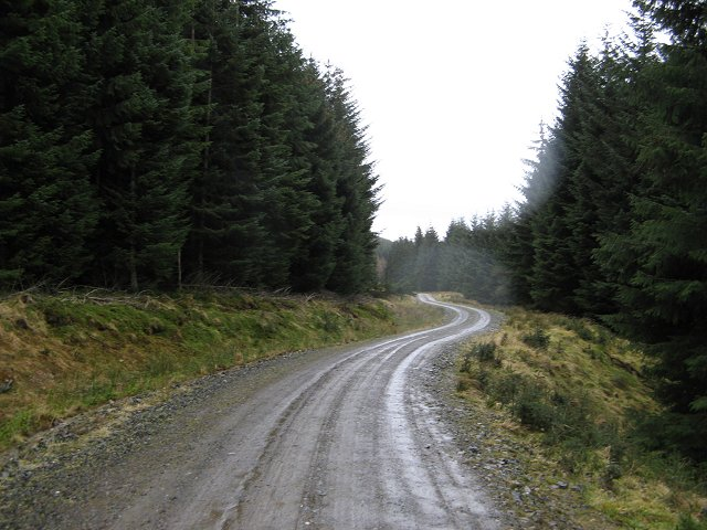 Forest road, Glenfinlet
