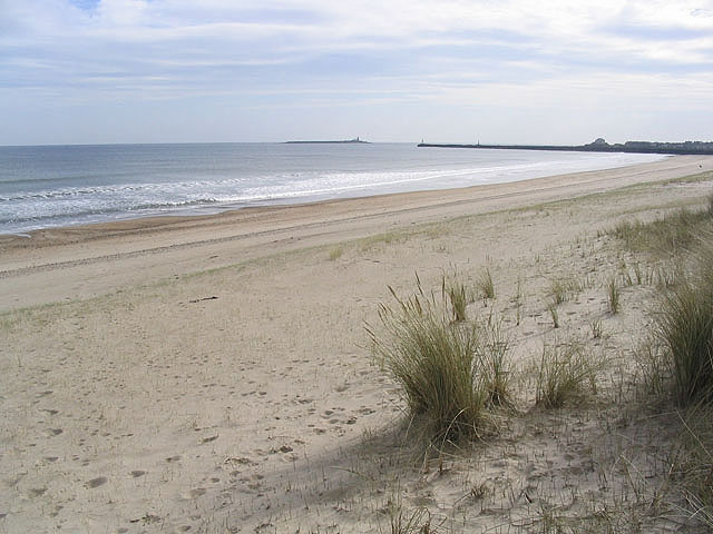 Warkworth Beach