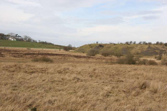 Heathland and old coal bing