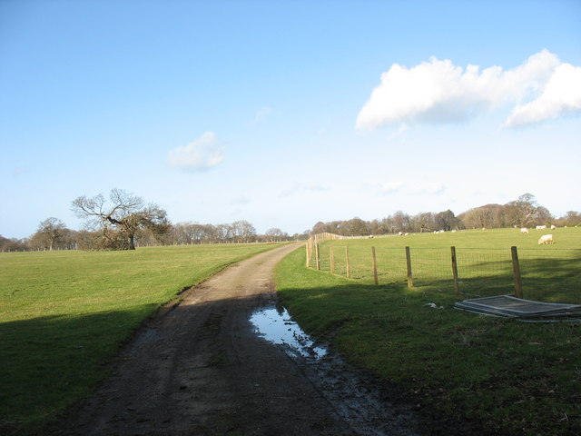 Estate road linking Bryntirion and Faenol Hall