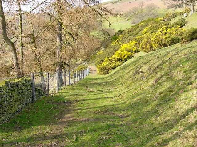 Track above Pentre