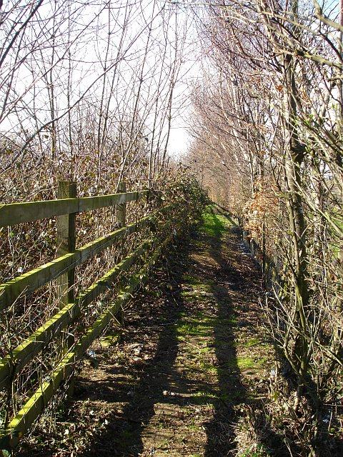 Footpath alongside the M2