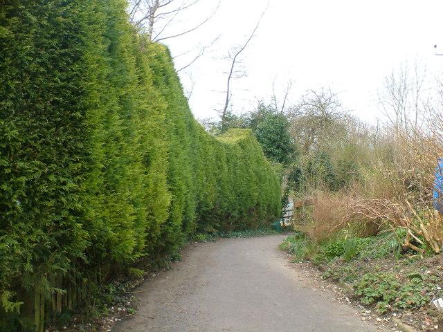 Footpath down Horton Hill