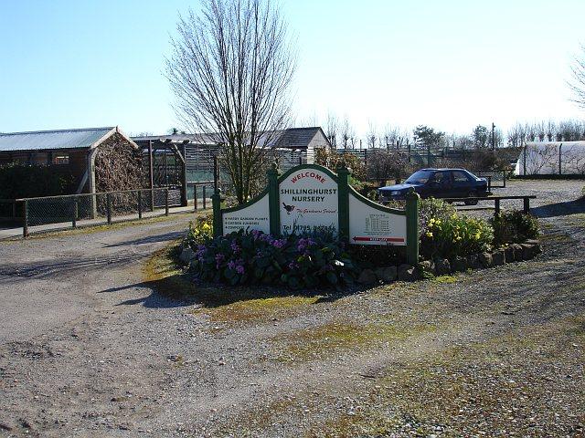 Shillinghurst Nursery
