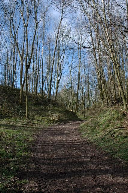 Hill fort near Brierley