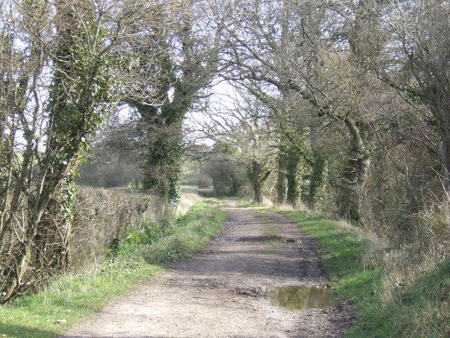 Rodwell Lane