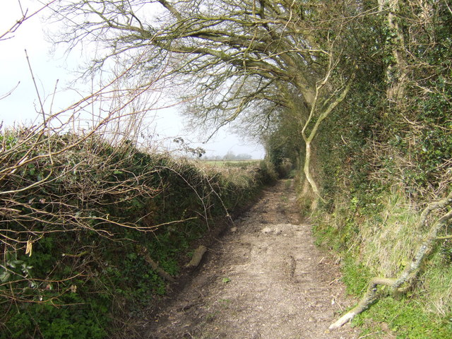 Byway to Cleverhayes Farm