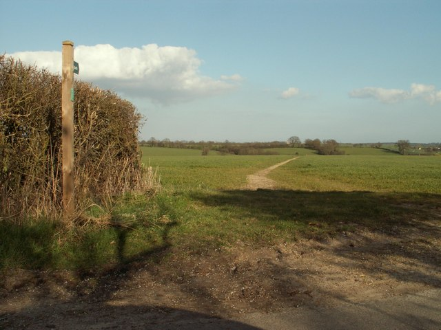 Footpath at Cookley Green