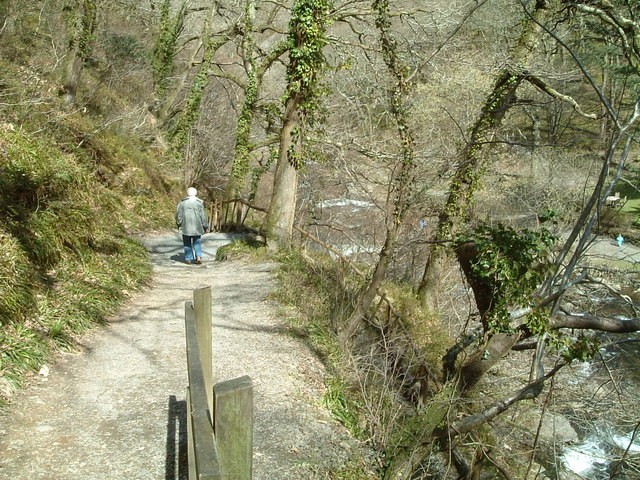 Path to Watersmeet .Devon