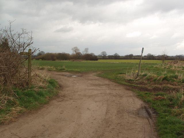 Footpath off Intake Lane Tollerton
