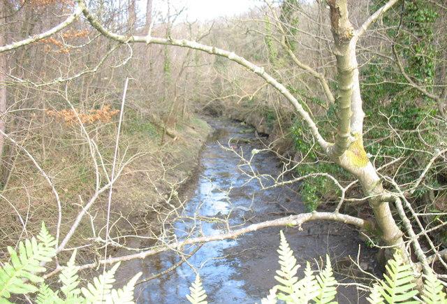 Unnamed stream in Limekiln Covert