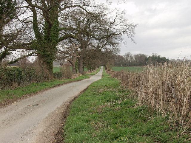 Lane near Evenall