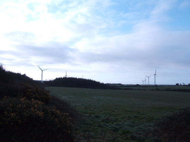 Wind Farm; early morning.