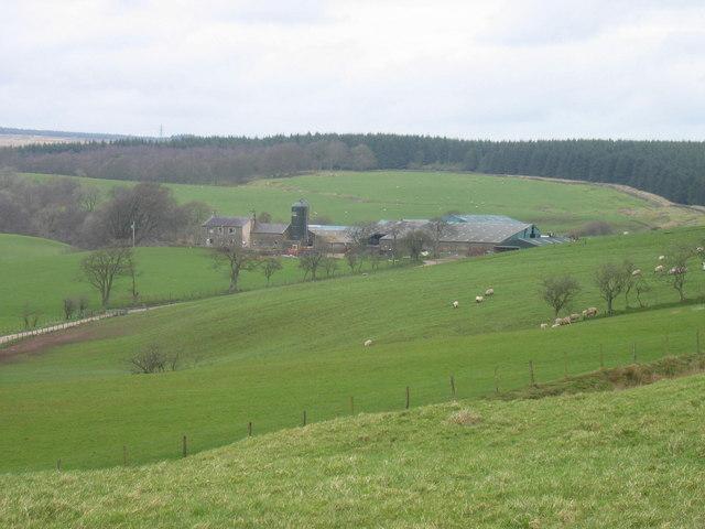 Snowden Close Farm