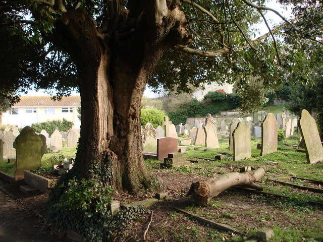 Graveyard, St Mary the Virgin, Higher Brixham