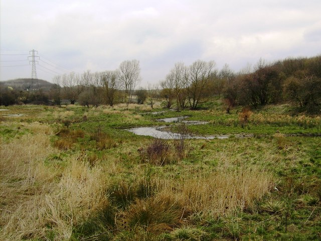 River Ray, Barnfield Road, Swindon (2)