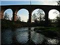 SJ7767 : Twemlow Railway Viaduct from NW by neil gibbs