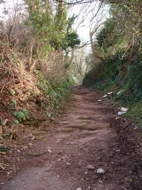 Public Footpath, Chisledon Hill, Higher Brixham