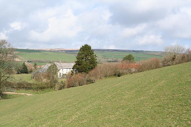 Molland: Lower Hill