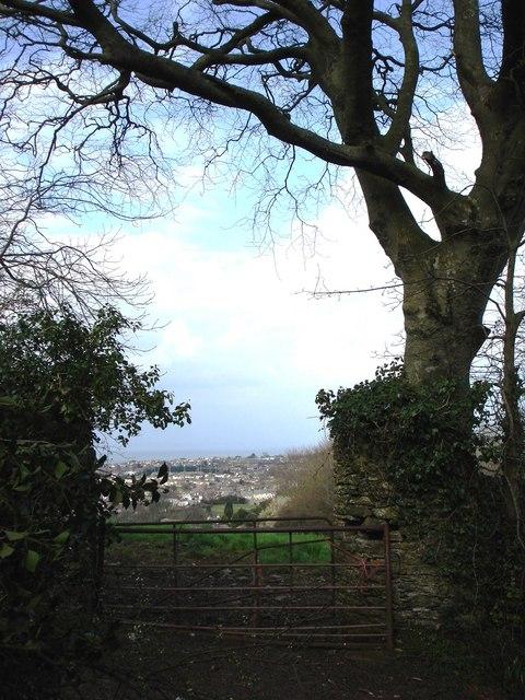 Gate near Yards Lane, Brixham
